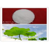 China 98% Natural Plant Extracts Powder / Organic Botanical Extracts CAS 475-83-2 Nuciferine wholesale