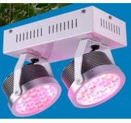 China Double holders mini Round shape grow light , hanging grow light  for plants  Led grow green lighting on sale