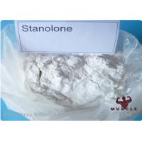 China Synthetic Anabolic Steroid Powder , Androstanolone Powder For Muscle Buliding CAS 521-18-6 wholesale