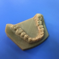 China High Precision Gray Tooth Model FDM 3D Printing Service For Medical Industry wholesale