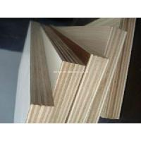 China Commerical Plywood (1220x2440) Okoume, Bintangor wholesale