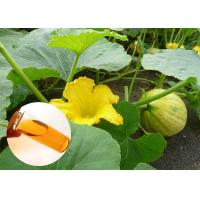 China Pumpkin Seed Oil Prevent Prostate Natural Dietary Supplements Food Grade wholesale