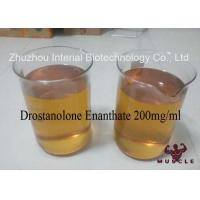 China Injectable Anabolic Drostanolone Steroid 200mg / Ml For Bodybuilding CAS 472-61-1 wholesale
