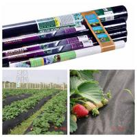 Rayson Brand Good Quality Agriculture Nonwoven