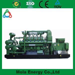 China 10KW Free energy biogas generator Sets for Farm wholesale
