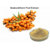 China Antioxidant Fruit Extract Powder 1% Total Flavonoids Seabuckthorn Extract Powder wholesale