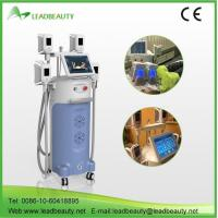 China Best selling cryolipolysis slimming machine wholesale