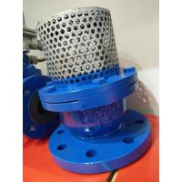 China PN16 Cast Iron Flanged Foot Valve With Stainless Steel Screen wholesale