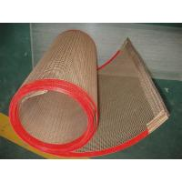 China ptfe teflon coated fiberglass mesh conveyor belt/ concrete reinforcing mesh with high quality and best  price wholesale