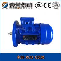 China High Torque OEM Induction Electric Motor Three Phase With CCC CE , 220v - 660v wholesale