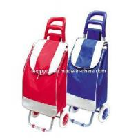 China 2012 Promotional Folding Shopping Trolley Bag with Eco-Friendly Material (TYB-T1202) wholesale