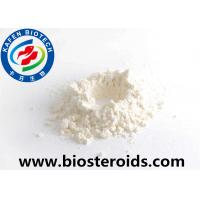 China 99% Local Anesthetic Agent Benzocaine Hydrochloride / Benzocaine HCL CAS 23239-88-5 wholesale