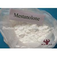 China Mestanolone Lean Muscle Building Steroids , Deca Anabolic Steroids With High Purity wholesale