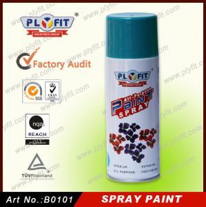 China Smooth Car Coating Clear Anti-Rust Waterproof Auto Aerosol Acrylic Auto Spray Paint wholesale