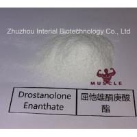 Quality Stronges Steroid Drostanolone Enanthate / Masteron Enanthate Powder For Cutting Cycles CAS 472-61-145 for sale