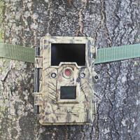 Buy cheap infrared hunting camera that Camera trap for hunting from wholesalers