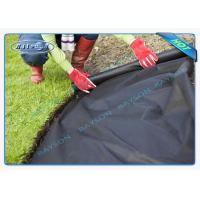 China Environmental Black Weed Control Fabric For Vegetable Garden wholesale