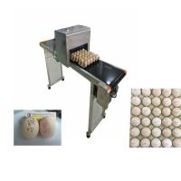 China Poultry Agriculture Egg Marking Equipment , Batch Code Printing Machine For Eggs wholesale