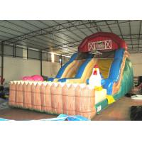 Inflatable slides  XS206