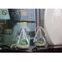 China Glass Plant Holders / Glass Plant Terrarium For Indoor Decoration wholesale