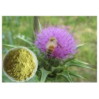 Buy cheap Silymarin Herbal Plant Extract Milk Thistle Powder From Seed Light Yellow Anti - Cancer from wholesalers