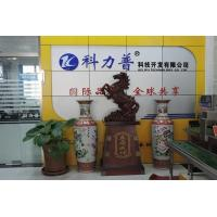 Xingtai Kelipu Technology Development Limited Company