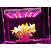 Buy cheap 330 W 60 Degree Beam Angle Led Plant Grow Lights With 3 Years Warranty Full Spectrum+UV+IR from wholesalers