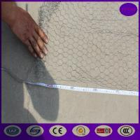 China 25mm ,50mm  Stainless steel Chicken wire netting , Rabbit Cage Hexagonal Wire Mesh wholesale