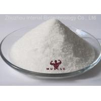 China 99% Purity Yk11 SARMS Raw White Powder Yk 11 CAS 1370003-76-1 with Safe Delivery wholesale