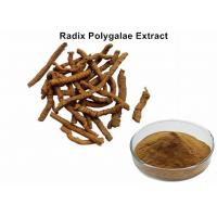 China Radix Polygalae Natural Plant Extracts With 8% Total Saponins Anti - Depression wholesale
