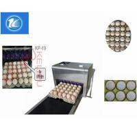 China High Output Egg Inkjet Coding Printer Automatically Updated For Time Characters wholesale