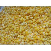 China For China Fresh Natural Canned Preserved Sweet Kernel Corn in 340g on sale