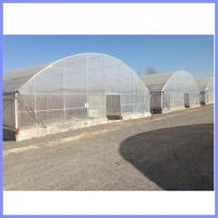China galvanized pipe greenhouse, vegetable greenhouse wholesale