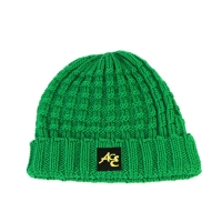 China High Quality ACE Factory Price ODM OEM Solid Green Color Unisex Adjustable Custom Logo Beanies Knitted Cap wholesale
