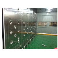 China Custom Class 10000 Clean Room Air Shower Passing Tunnel With Automatic Door wholesale