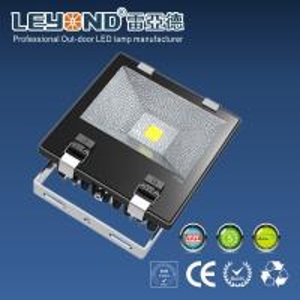 China CE COB Outdoor LED Flood Lights , 10w 20w 30w exterior flood lights energy efficient wholesale