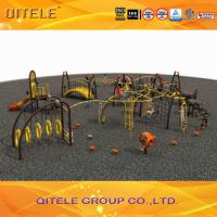 China Professional Kids Outdoor Gym Equipment , Climbing Playground Equipment For School wholesale