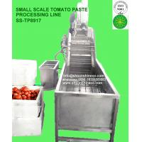 China Small Size tomato paste processing line small scale tomato paste factory mini tomato production line Italy Technology wholesale