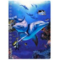 China 45 Sheets 3D PET Cover Lenticular Spiral A5 Notebook With UV Printing wholesale
