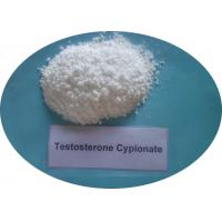China Testosterone Cypionate CAS 58-20-8 Hormone Powder wholesale