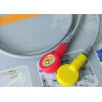 Quality Snap Electrode Holter ECG Cable 2 Leads Medical Device Accessories For Patient for sale