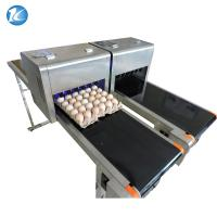 China Easy Operation Egg Batch Number Printer , Expiry Date Printing Machine For Eggs wholesale