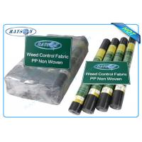 China Biodegradable Non Woven Landscape Fabric Roll Packing for Garden Plant Protection wholesale