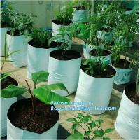 China Drain Growing Bags-White Color Grow Bags-100%Virgin Raw PE Planter Bags -25Gallon 150Microns Thickness Planting Bag, PAC wholesale