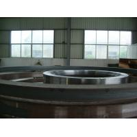 China GR5 Forged Titanium Flanges With ANSI B16.5 Welding Neck Flange wholesale