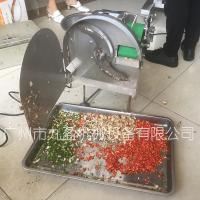 China hot sale houseuse small cutter vegetable fruit cutting machinery electric wholesale
