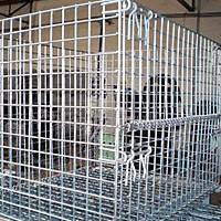 China Wire Mesh Containers wholesale