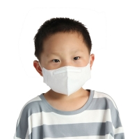 China Earloop Kn95 Disposable Small Anti Smog Haze Masks For Kids wholesale