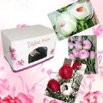 China Flower Printer (Un-Fl-Mn103) wholesale