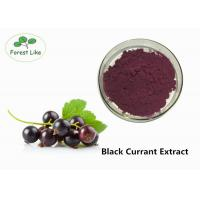 China Anthocyanin Extract / Black Currant Extract Powder 5% Anthocyanins Protect Eye wholesale